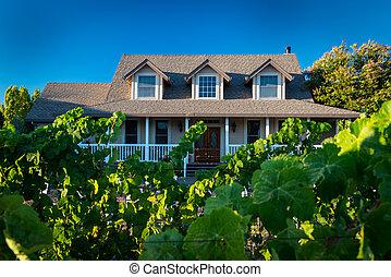 hogar, con, uvas de vino, crecer, en frente, yarda