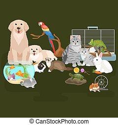 hogar, mascotas, conjunto, gato, perro, loro, goldfish,...