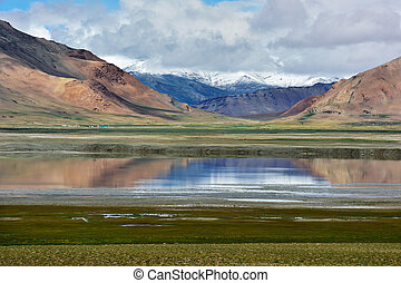 hoge bergen, meer, in, een, duidelijk, zonnig, zomer, day:, roze, bergen, blauw water, oppervlakte, groene, groot, akker, op oever, ladakh, noordelijk, india.