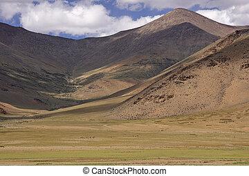 hoge prairie, hoogte