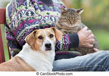 hogere mens, met, huisdieren