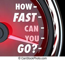 hogyan, gyorsan, konzerv, ön, jár, sebességmérő, gyorsaság,...