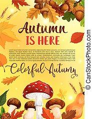 hoja, cartel, saludo, otoño, vector, bosque, otoño