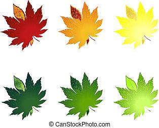 hoja, de, árboles, de, diferente, colour., un, vector, ilustración