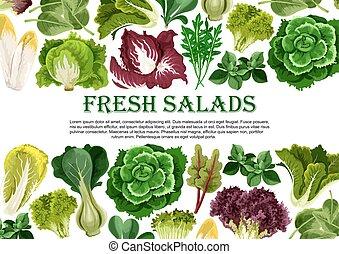 hoja ensalada, vegetal, verde, bandera, frontera, diseño