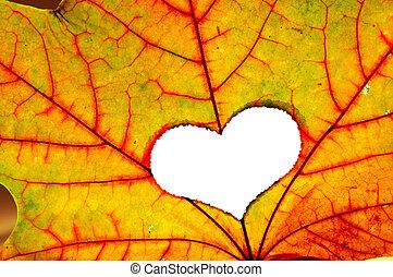 hoja otoño, con, un, agujero, en forma, de, corazón