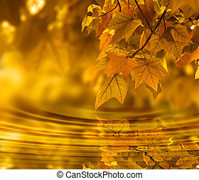hoja otoño, plano de fondo