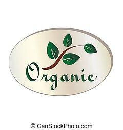 hoja, vector, orgánico, natural, icono