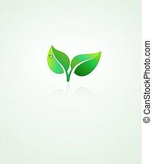 hoja verde, plano de fondo