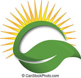 hoja verde, rayos sol, logotipo