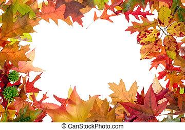 hojas, 2, marco, otoño