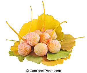 hojas, aislado, biloba de ginkgo, montón, fruits, blanco, encima