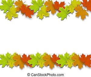 hojas, autum, plano de fondo