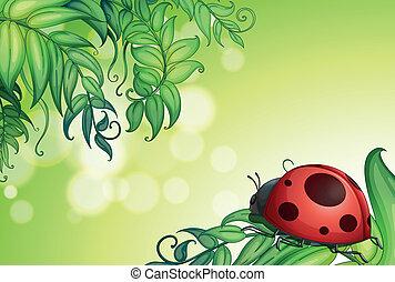 hojas, bicho verde, sobre