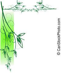 hojas, blanco, vector
