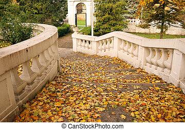 hojas caídas, en, escalera, otoño, estación