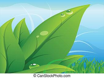 hojas, con, cielo, plano de fondo