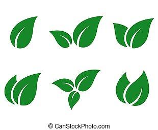 hojas, conjunto, verde, icono