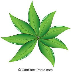hojas de té, vector, ilustración