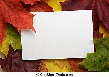 hojas del arce del otoño, con, tarjeta de papel