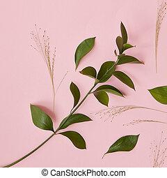 hojas, en, un, fondo rosa