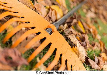 hojas, encima de cierre, rastrillo