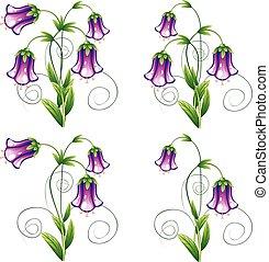 hojas, flor, bluebell