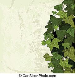 hojas, fondo verde
