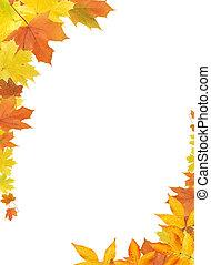 hojas, frontera, otoño