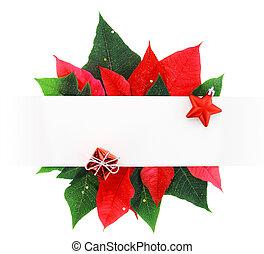 hojas, hecho, bandera, navidad, flor de nochebuena