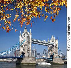 hojas, londres, torre, otoño, puente, inglaterra