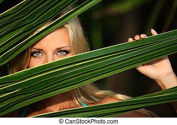 hojas, mujer, palma, atrás