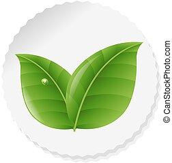 hojas, naturaleza, etiqueta