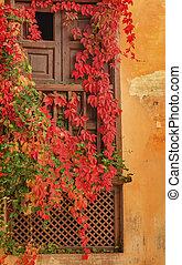 hojas, otoño, jardín, granada, ventana, andalucía, españa, ...