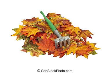 hojas, rastrillo, colorido, otoño