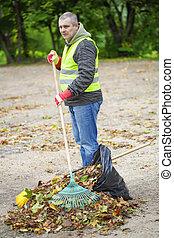 hojas, rastrillo, hombre, collects