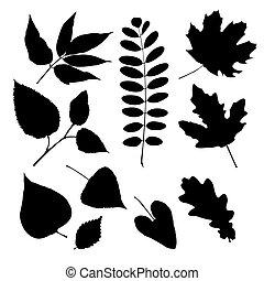 hojas, siluetas, conjunto, diferente