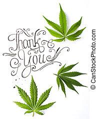 hojas, usted, agradecer, tarjeta,  marijuana