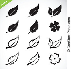 hojas, vector, conjunto, icono