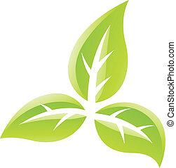 hojas, verde, brillante, icono