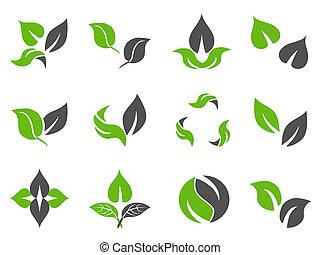 hojas verdes, diseño, iconos