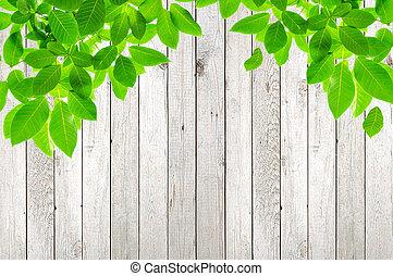 hojas verdes, en, madera, plano de fondo