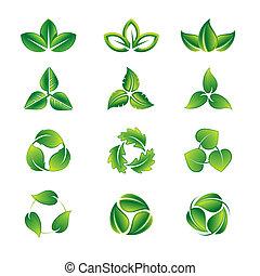 hojas verdes, icono, conjunto