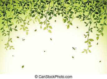 hojas verdes, plano de fondo
