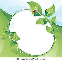 hojas verdes, y, mariquita
