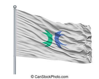 Hokuto City Flag On Flagpole, Japan, Yamanashi Prefecture, ...