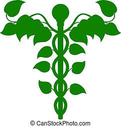holístico, adn, concepto, caduceo, medicina, o