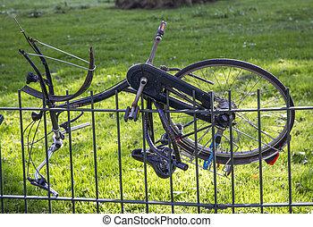 holandés, bicicleta, transporte