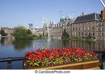 holandés, parlamento