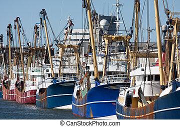 holandés, puerto, con, moderno, pesca, cortadores